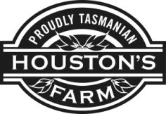 Houston Logo